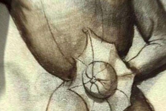 Баклер по Тальхофферу, изображение из фехтбука